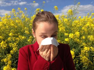 Don't Wait: Nip Your Allergies In The Bud Now